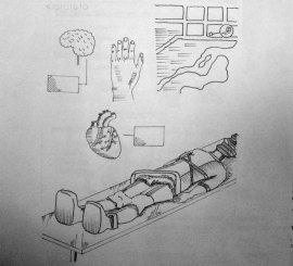 Ilustración secundaria