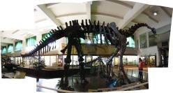 De visita en el Museo Argentino de Ciencias Naturales